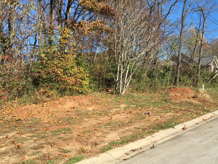 Additional photo for property listing at Address Not Available  Morristown, Tennessee 37814 Estados Unidos