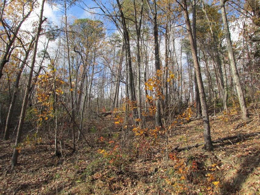 Additional photo for property listing at Upper Windsor Way Upper Windsor Way Gatlinburg, Tennessee 37738 United States