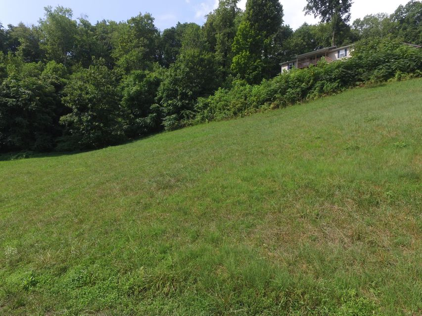 Additional photo for property listing at Lots 22 Lindsay Mill Lots 22 Lindsay Mill Lake City, Tennessee 37769 United States