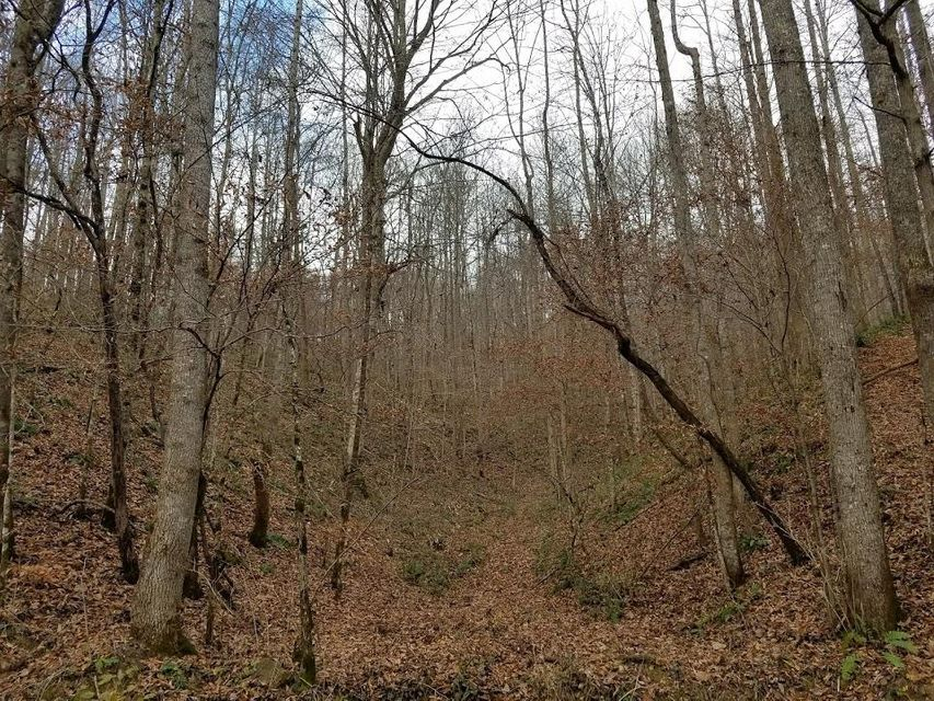 Additional photo for property listing at Manson Road Manson Road Jamestown, Tennessee 38556 Estados Unidos
