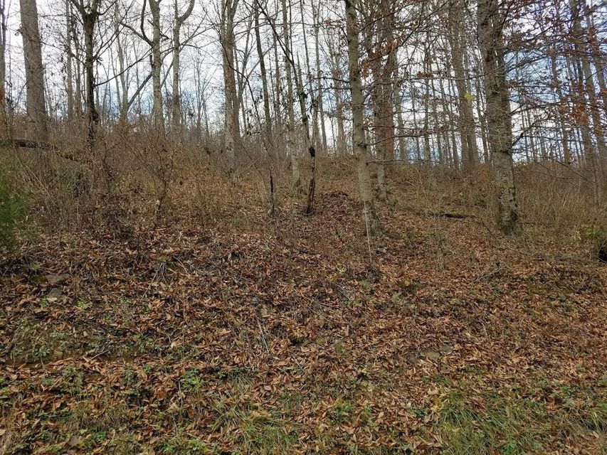 Additional photo for property listing at Manson Road Manson Road Jamestown, Tennessee 38556 États-Unis