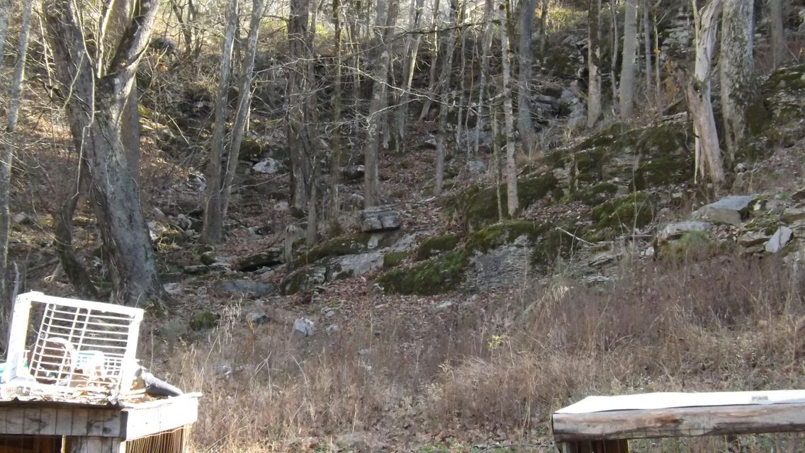 Additional photo for property listing at 2116 Old Woodway Road 2116 Old Woodway Road Jonesville, Virginia 24263 United States