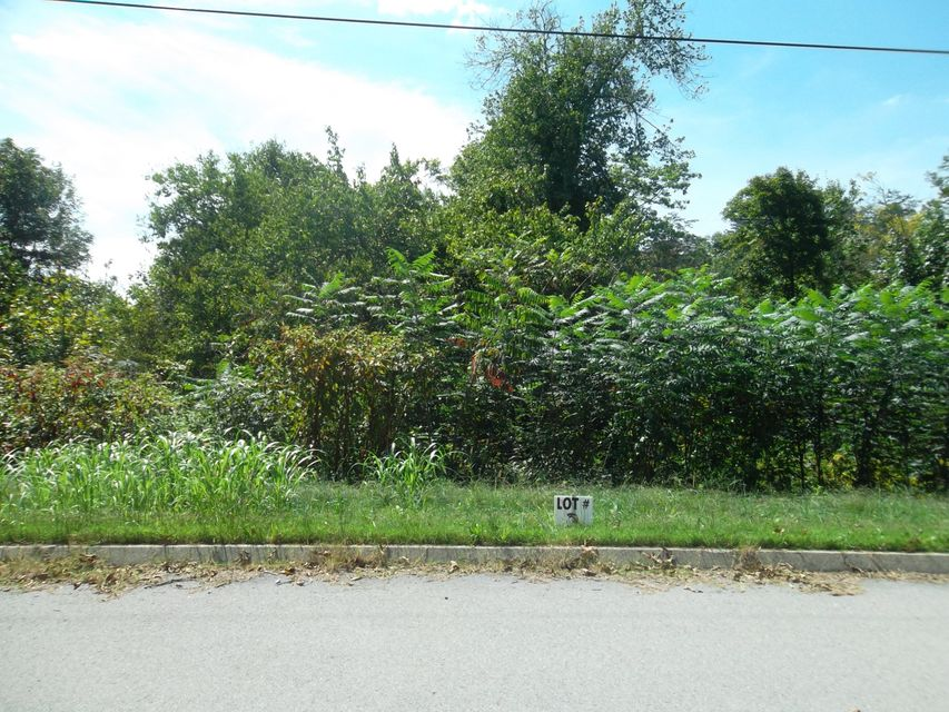 Additional photo for property listing at L-3 Wolf Peak Lane L-3 Wolf Peak Lane Heiskell, Tennessee 37754 Estados Unidos