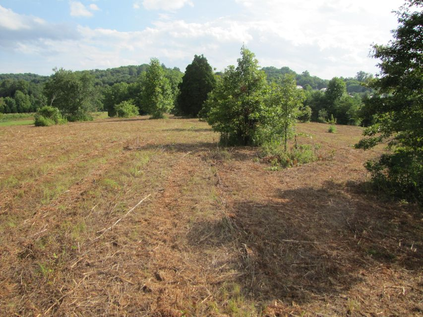 Additional photo for property listing at W Lamar Alexander Pkwy W Lamar Alexander Pkwy Friendsville, 田纳西州 37737 美国