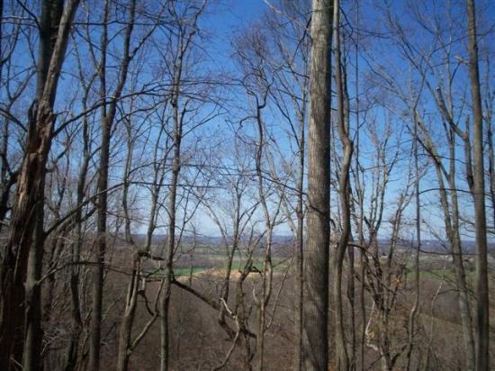 土地,用地 为 销售 在 Red Bird Lane Red Bird Lane Walland, 田纳西州 37886 美国