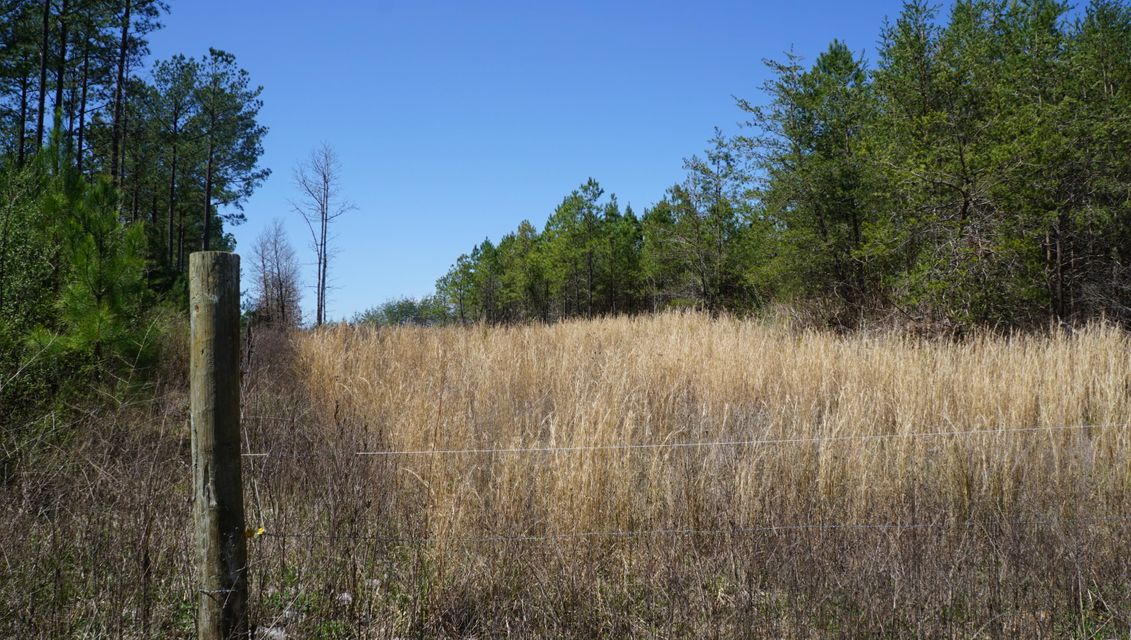 Land for Sale at 10 Acres Off Thomas Springs Road 10 Acres Off Thomas Springs Road Crossville, Tennessee 38572 United States