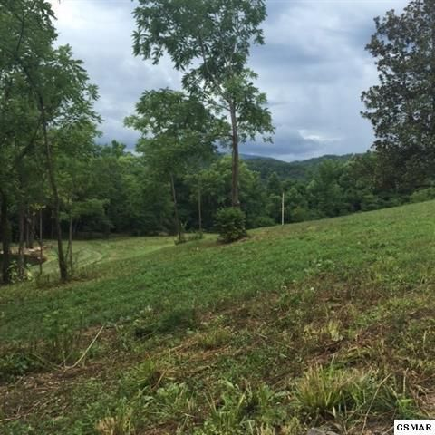 Additional photo for property listing at 3320 E Highway 25/70 3320 E Highway 25/70 Del Rio, Tennessee 37727 Estados Unidos