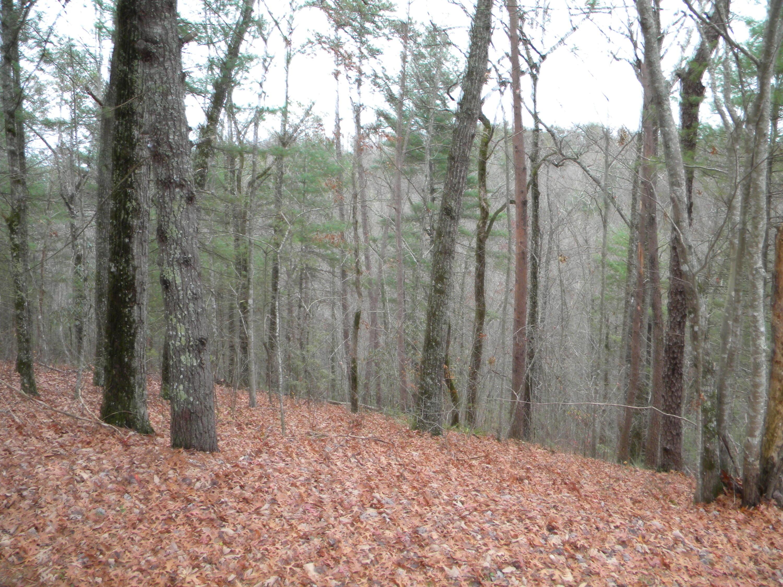 土地,用地 为 销售 在 Lot 7 Poplar Bluff Road Lot 7 Poplar Bluff Road Walland, 田纳西州 37886 美国
