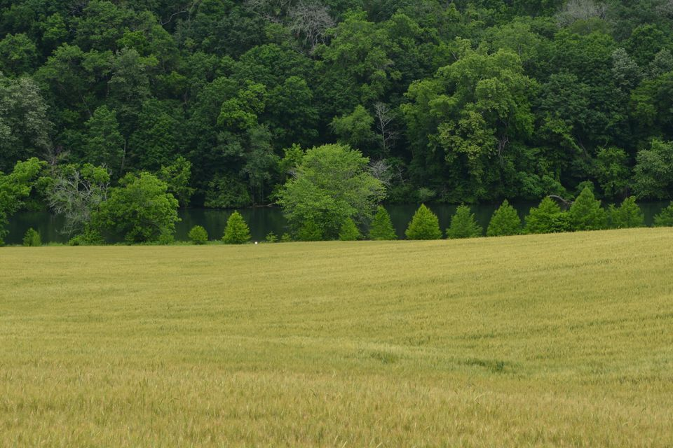 Land for Sale at Lot 14 R Holston View Road Lot 14 R Holston View Road New Market, Tennessee 37820 United States