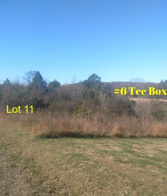 Additional photo for property listing at Unola Unola Vonore, Tennessee 37885 Estados Unidos