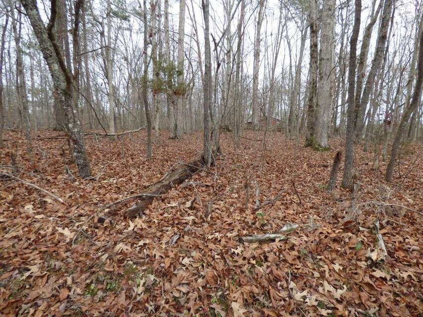 Additional photo for property listing at 314 Gun Powder Road 314 Gun Powder Road Rockwood, Tennessee 37854 États-Unis