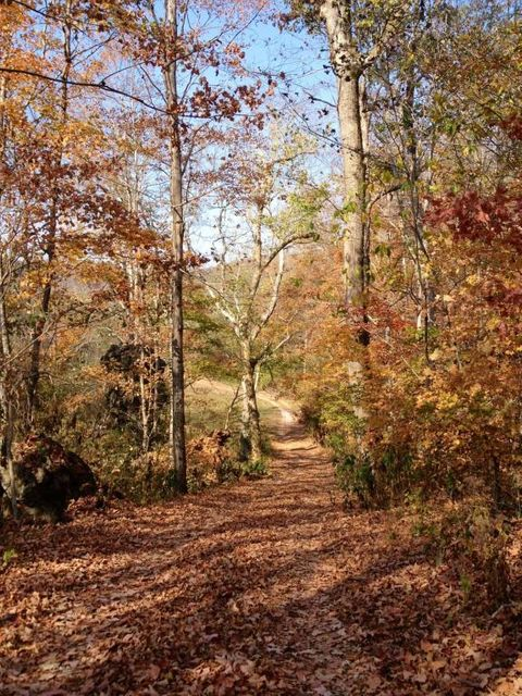 Land for Sale at 199 Johnson Ferry Lane 199 Johnson Ferry Lane Andersonville, Tennessee 37705 United States