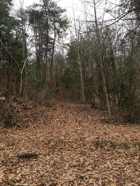 Land for Sale at S Chapel Way S Chapel Way Parrottsville, Tennessee 37843 United States
