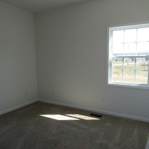 Additional photo for property listing at 106 John Louise Lane 106 John Louise Lane Jacksboro, 田纳西州 37757 美国