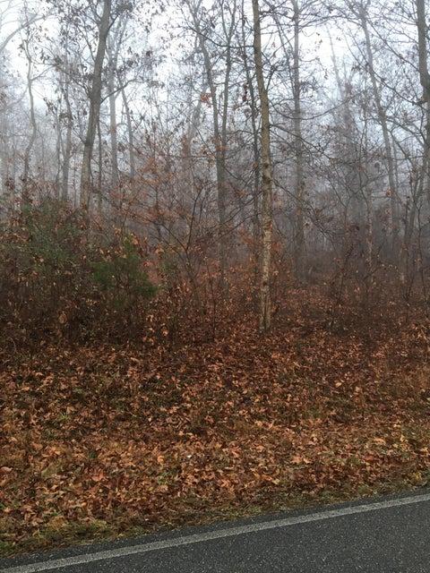Земля для того Продажа на 3116 E Watkins Road 3116 E Watkins Road Loudon, Теннесси 37774 Соединенные Штаты