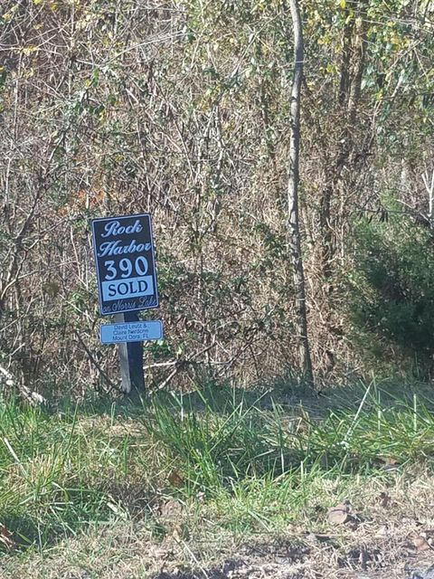 Additional photo for property listing at Lot 390 Graphite Court Lot 390 Graphite Court New Tazewell, Tennessee 37825 Estados Unidos