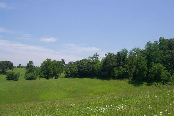 Additional photo for property listing at Lot 20 Espalier Drive Lot 20 Espalier Drive Decatur, Tennessee 37322 États-Unis