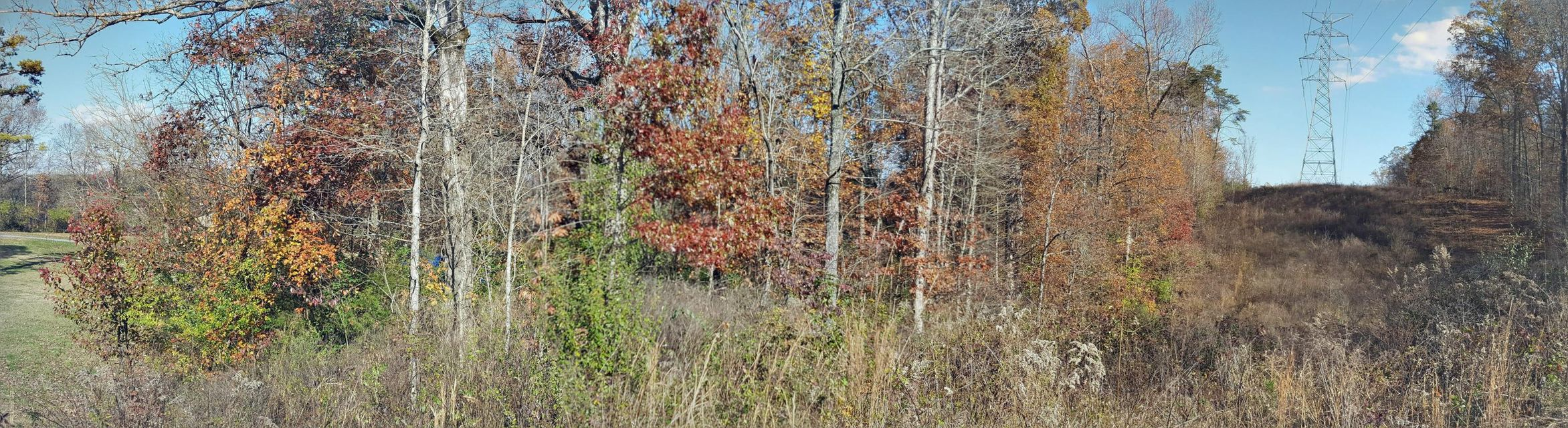 Land for Sale at 3550 Wrights Ferry Road 3550 Wrights Ferry Road Louisville, Tennessee 37777 United States