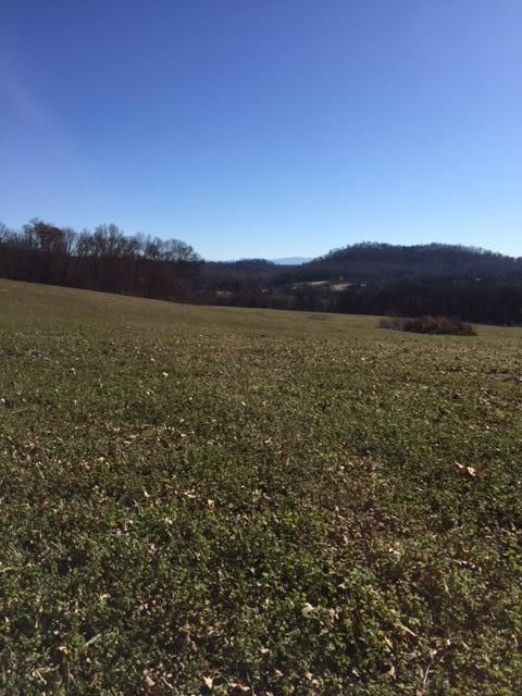 Additional photo for property listing at Kiser Station Road Kiser Station Road Friendsville, Tennessee 37737 United States
