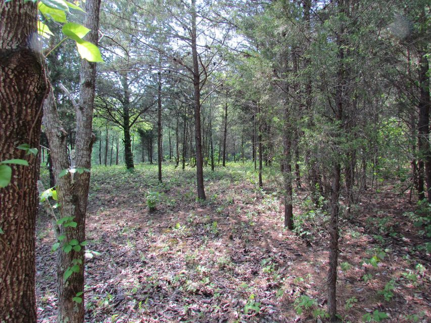 Land for Sale at Chetola Trail Chetola Trail Townsend, Tennessee 37882 United States