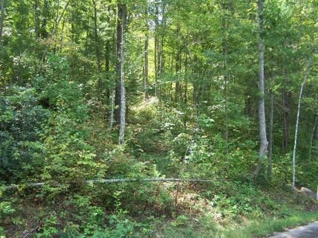 Additional photo for property listing at Chetola Trail Chetola Trail Townsend, Tennessee 37882 United States