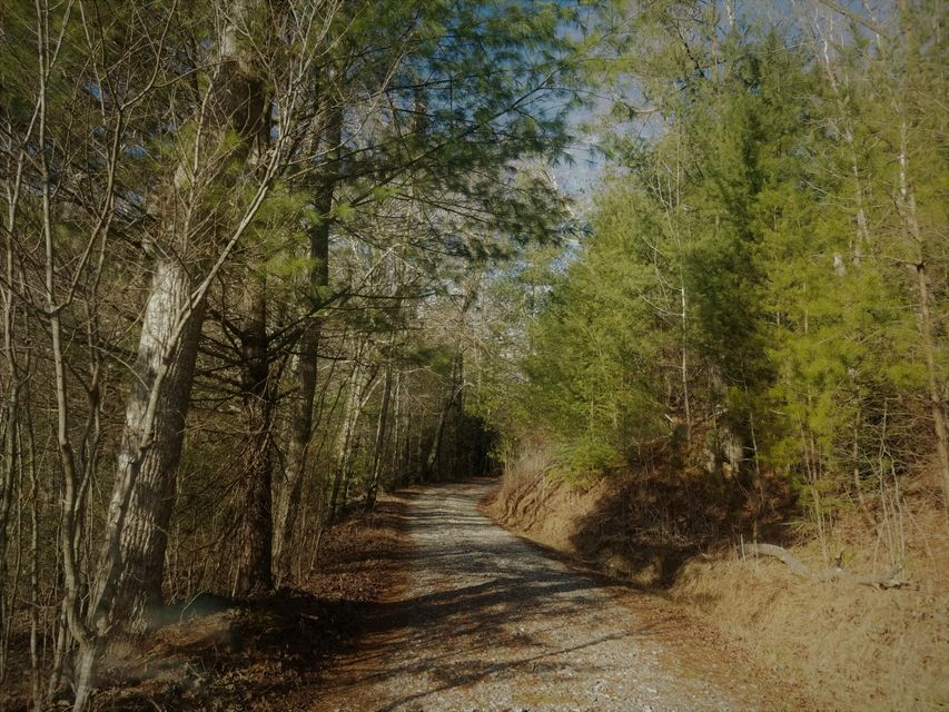 Additional photo for property listing at 7.92 Acres Copper Hollow Road 7.92 Acres Copper Hollow Road Coker Creek, 田纳西州 37314 美国