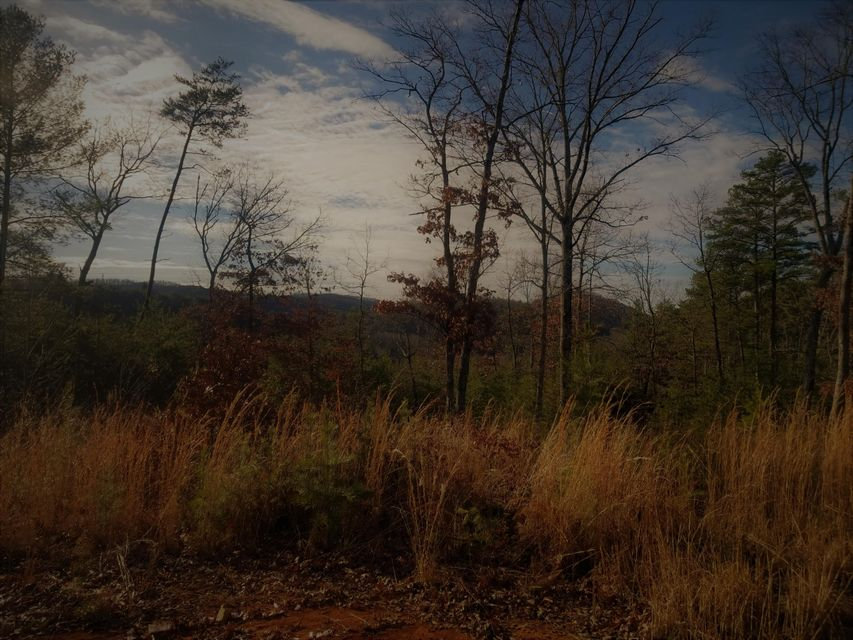 Terreno por un Venta en 7.92 Acres Copper Hollow Road 7.92 Acres Copper Hollow Road Coker Creek, Tennessee 37314 Estados Unidos