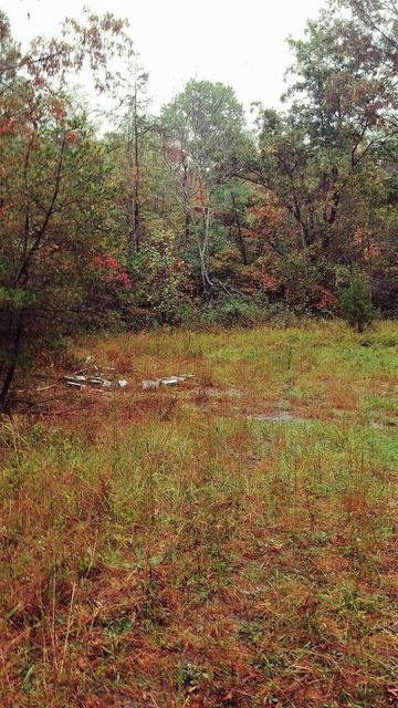 Additional photo for property listing at Tn Hwy 62 Tn Hwy 62 Deer Lodge, Tennessee 37726 Estados Unidos