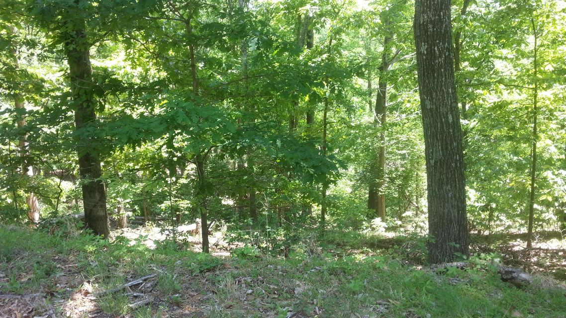 Land for Sale at 710 E Muskogee Drive 710 E Muskogee Drive Mooresburg, Tennessee 37811 United States
