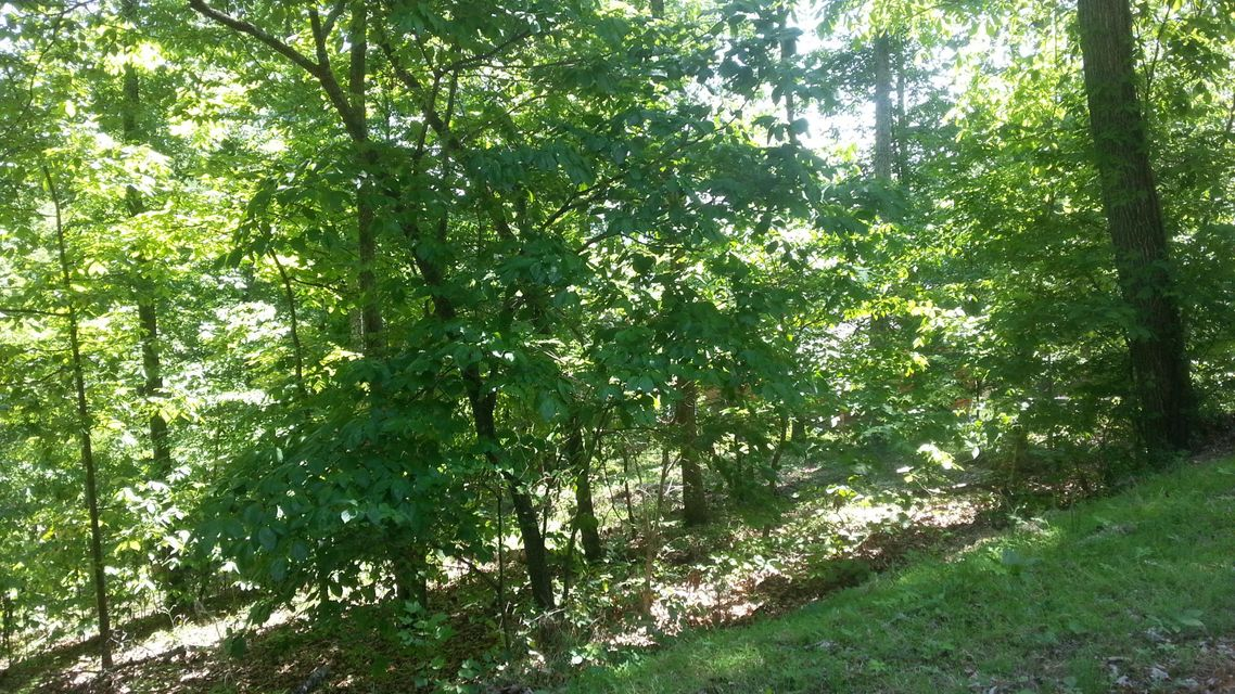 Additional photo for property listing at 710 E Muskogee Drive 710 E Muskogee Drive Mooresburg, Tennessee 37811 United States
