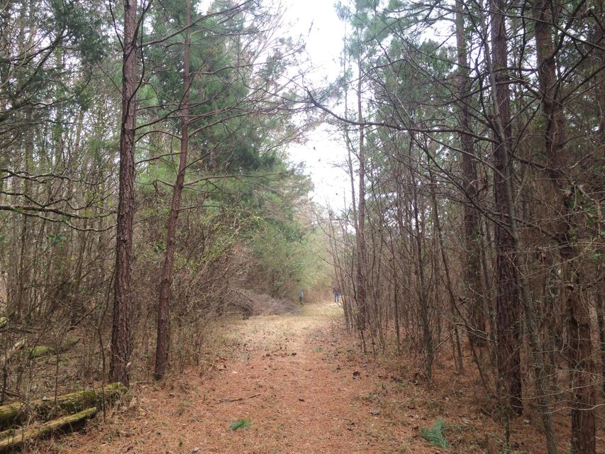 Land for Sale at County Road 168 County Road 168 Athens, Tennessee 37303 United States