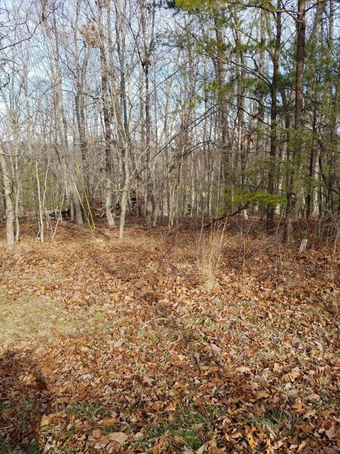 Additional photo for property listing at 12 Clason Point 12 Clason Point Crossville, Tennessee 38558 Estados Unidos