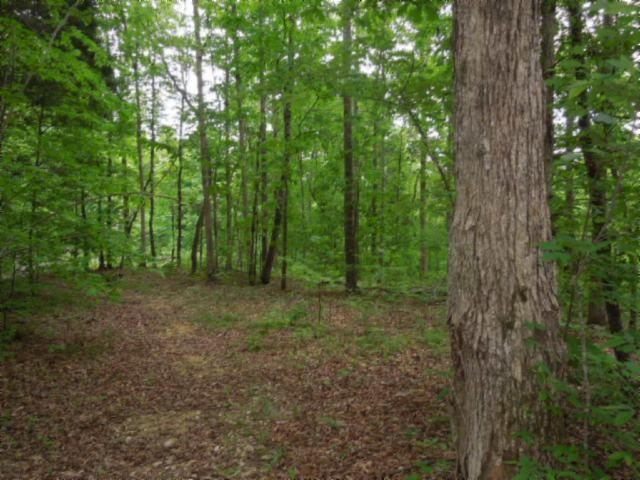 Land for Sale at 156.13 Ac. Clay County Hwy 156.13 Ac. Clay County Hwy Celina, Tennessee 38551 United States