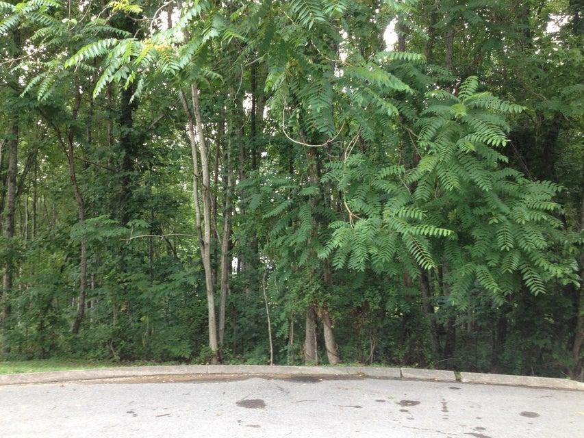 土地,用地 为 销售 在 Quail Hollow Lane Quail Hollow Lane Clinton, 田纳西州 37716 美国