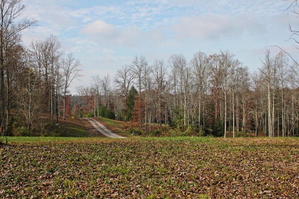 土地,用地 为 销售 在 Lot 156 Crouch Branch Lane Lot 156 Crouch Branch Lane Allardt, 田纳西州 38504 美国