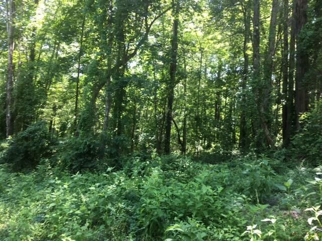 Land for Sale at 8 Laurel Place 8 Laurel Place Norris, Tennessee 37828 United States