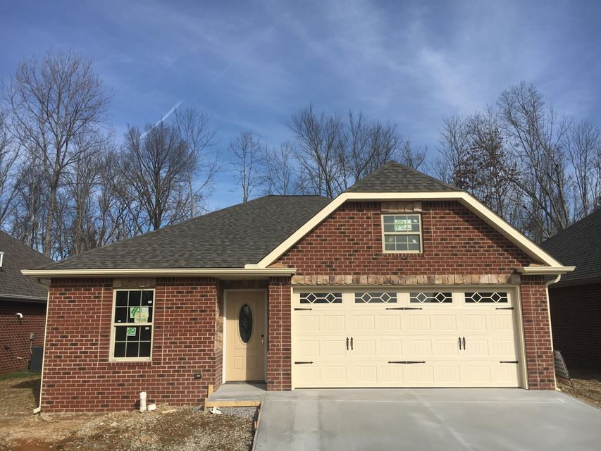 Single Family Home for Sale at 9209 Dragonfly Way 9209 Dragonfly Way Strawberry Plains, Tennessee 37871 United States