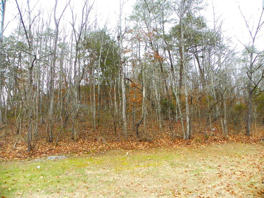 Land for Sale at Dollywood Lane Dollywood Lane Pigeon Forge, Tennessee 37863 United States