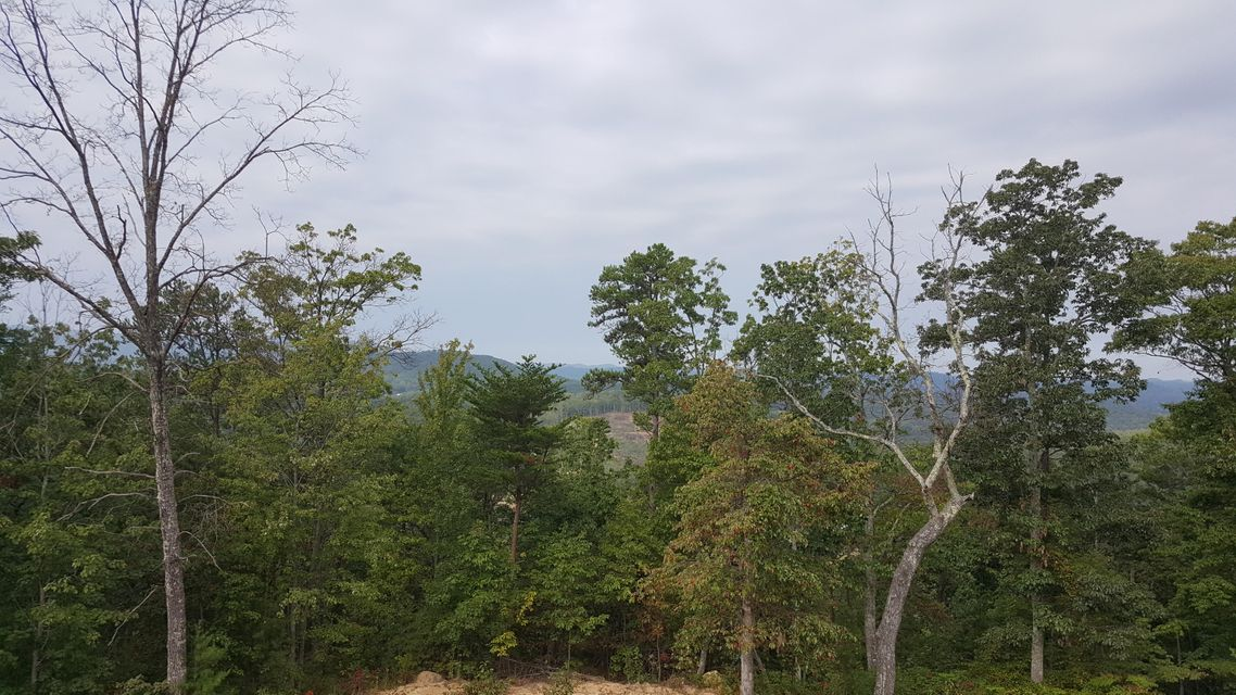 Additional photo for property listing at Indian Ridge Drive Indian Ridge Drive Tellico Plains, Tennessee 37385 United States