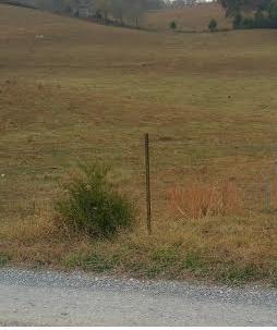 Земля для того Продажа на Lilac Lane Lilac Lane Jonesville, Виргиния 24263 Соединенные Штаты