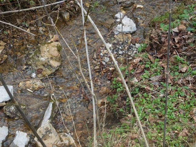 Земля для того Продажа на Ben Birdwell Ben Birdwell Bloomington Springs, Теннесси 38545 Соединенные Штаты