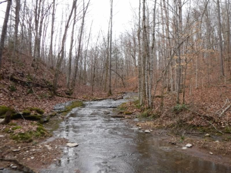 Terrain pour l Vente à 85.99 Bowman Lane 85.99 Bowman Lane Lafayette, Tennessee 37083 États-Unis