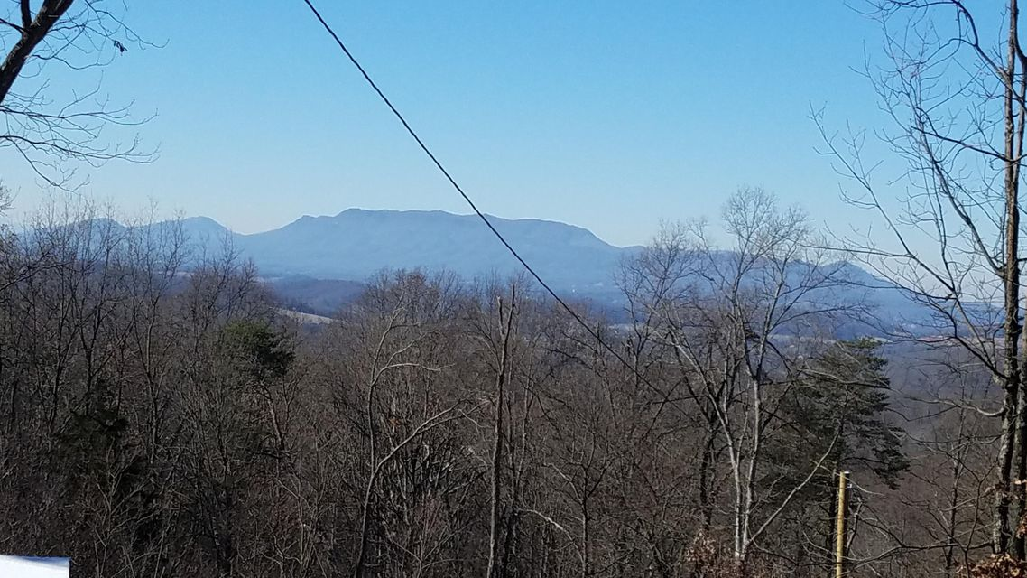 Земля для того Продажа на Par 19 Neddy Mountain Road Par 19 Neddy Mountain Road Del Rio, Теннесси 37727 Соединенные Штаты