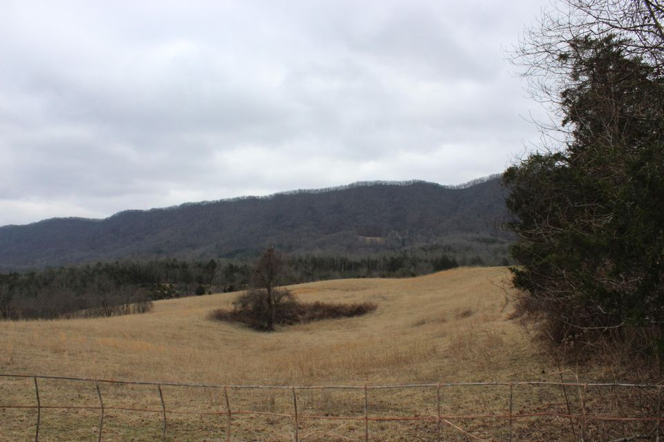 Terrain pour l Vente à Davidson/Dalton Ridge Road Davidson/Dalton Ridge Road Thorn Hill, Tennessee 37881 États-Unis