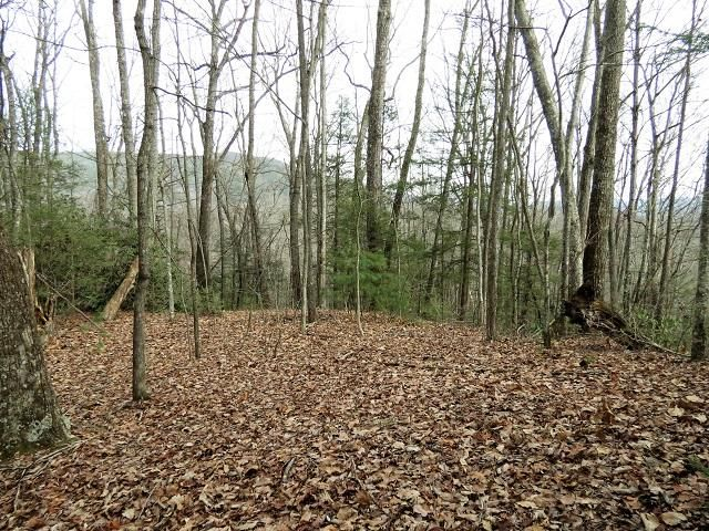 Land for Sale at Lot 2 Sonshine Ridge Road Lot 2 Sonshine Ridge Road Cosby, Tennessee 37722 United States