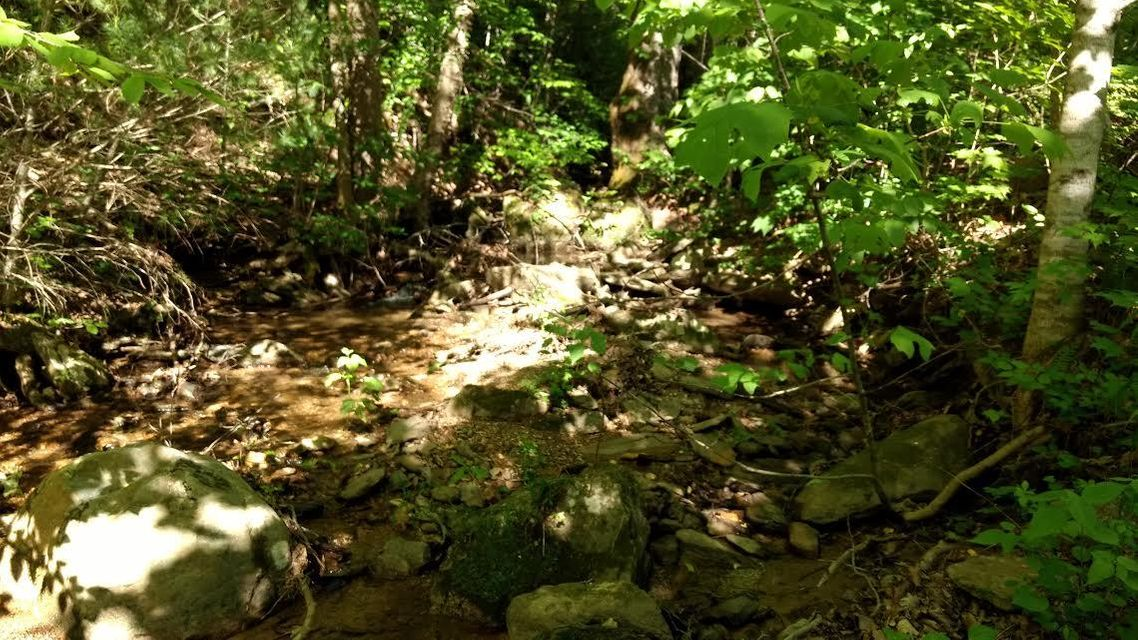 Land for Sale at 1970 Carrs Creek Road 1970 Carrs Creek Road Townsend, Tennessee 37882 United States