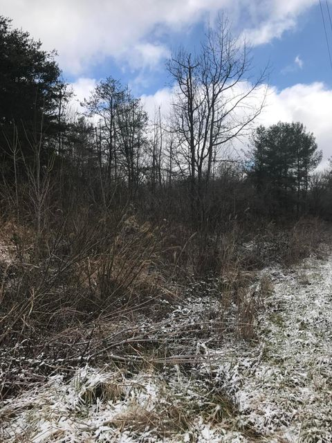 Land for Sale at Blue Springs Pkwy Blue Springs Pkwy Greeneville, Tennessee 37745 United States