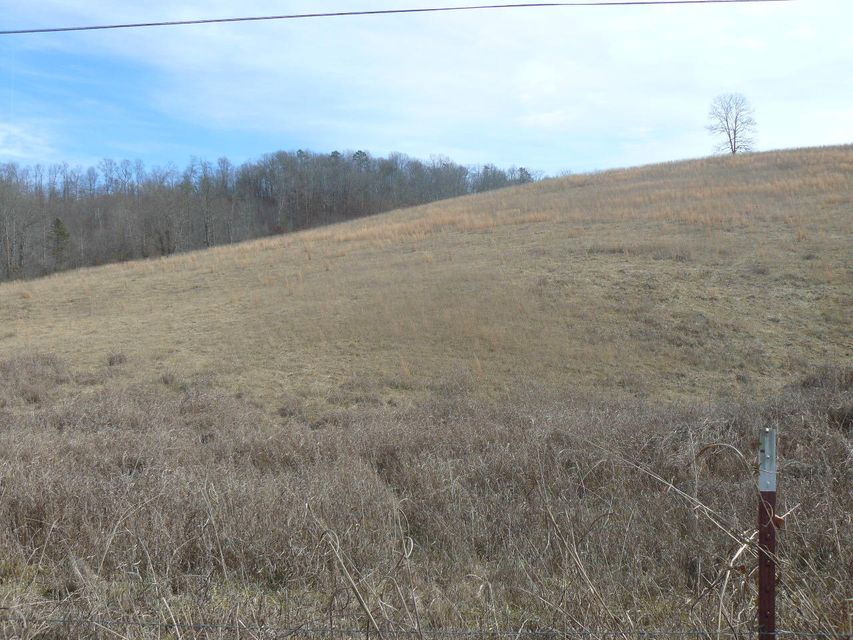 Terreno por un Venta en Clouds Road Clouds Road New Tazewell, Tennessee 37825 Estados Unidos