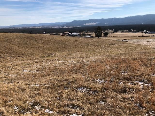 Land for Sale at 1522 Wilson Hill Road 1522 Wilson Hill Road Rose Hill, Virginia 24281 United States
