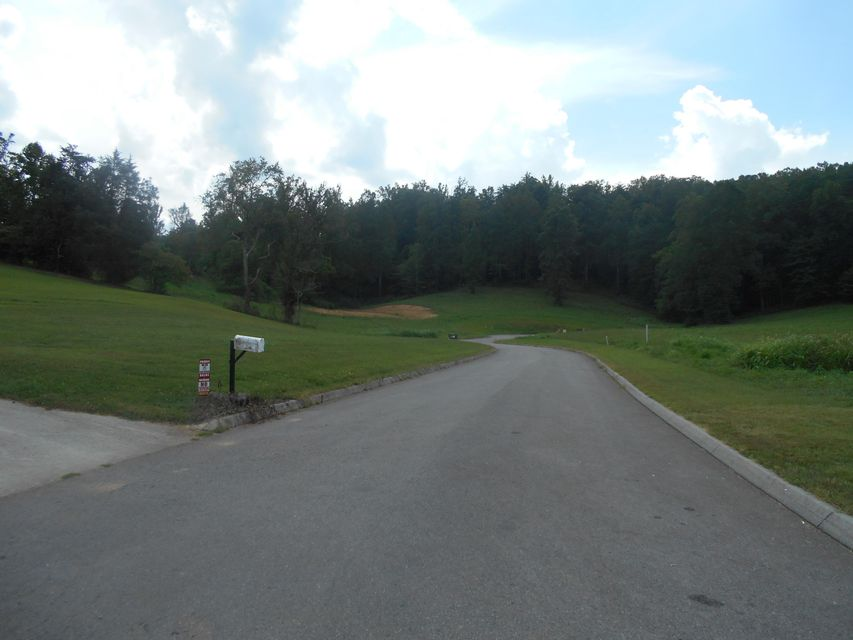 Additional photo for property listing at Briar Ridge Lane Briar Ridge Lane Strawberry Plains, Tennessee 37871 United States